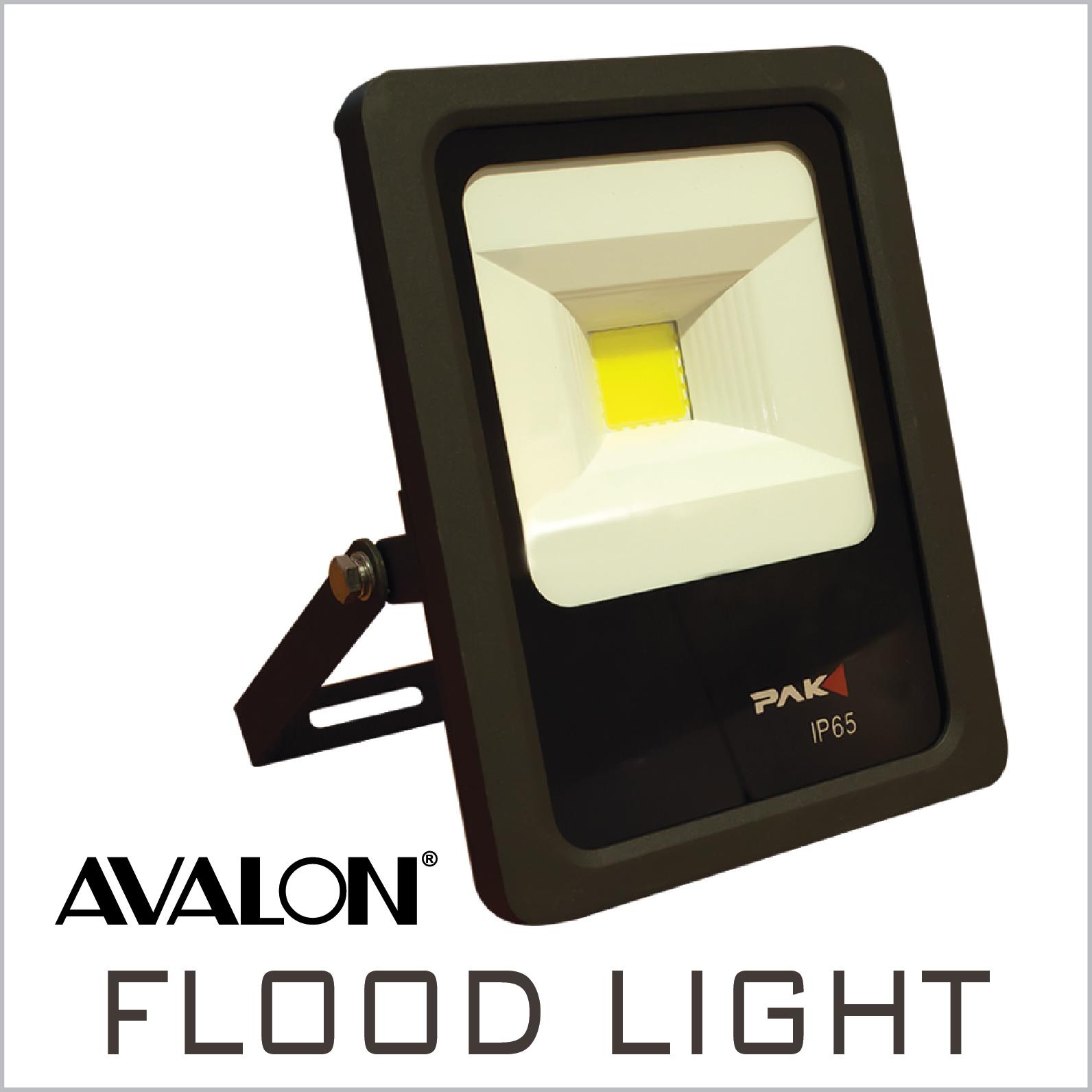 Flood Light