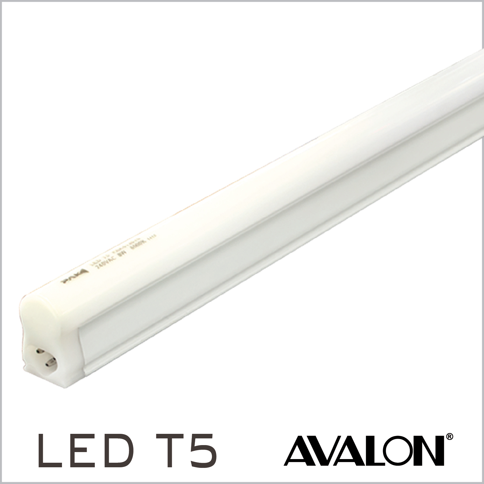 prismatic collections electrical of fluorescent diffuser pack battens light lighting wimbledon and